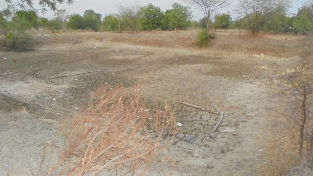 Dried farm pond of Rendabahali village