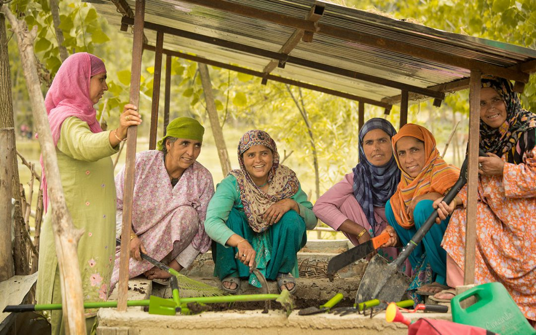 Occupational and Agricultural Rehabilitation of Flood Affected Households in Kashmir