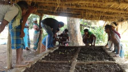 Community Groups Spearheading Increased Agricultural Productivity