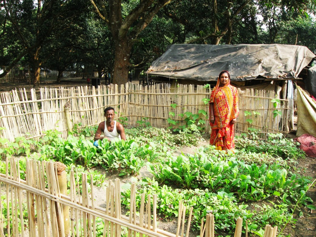 1 kitchen garden