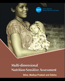 Multi‐Dimensional Nutrition‐Sensitive Assessment (MDNA)