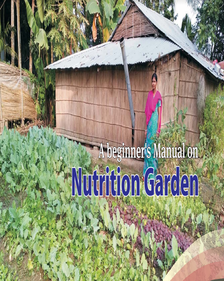 A Beginner's Manual on Nutrition Garden