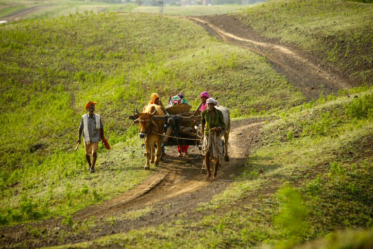 COVID-19 and Rural India