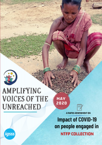 Impact of COVID-19 on Non-Timber Forest Products Collectors